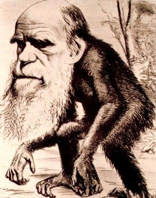 Resultado de imagen de darwinismo